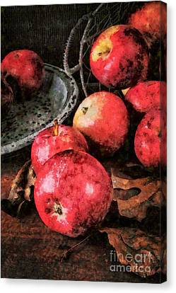 Apples Still Life Cezanne Style Canvas Print
