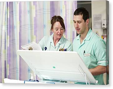 Apprentice Canvas Print - Apprentice Clinical Support Workers by Lth Nhs Trust