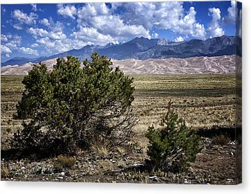 Approaching Great Sand Dunes #1 Canvas Print