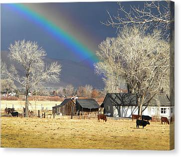 Approaching Storm At Cattle Ranch Canvas Print by Frank Wilson