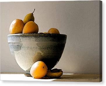 Apricot Bowl  Canvas Print by Cole Black