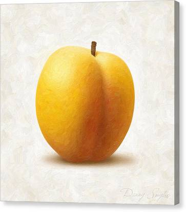 Apricot Canvas Print by Danny Smythe
