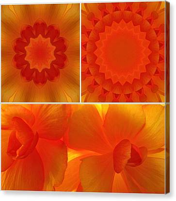 Collage Tapestries - Textiles Canvas Print - Apricot by Tom Druin