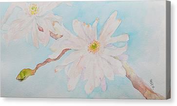 White Gardenia Canvas Print - April 1st by Beverley Harper Tinsley