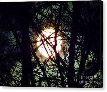 April 3 Am Moon Canvas Print by Judy Via-Wolff