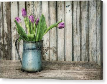 April Showers Canvas Print by Robin-Lee Vieira