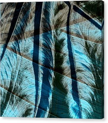 Aqua And Brown Leaf Montage Canvas Print by Bonnie Bruno