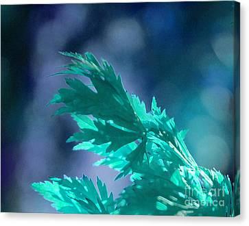 Aqua Dreams  Canvas Print by First Star Art