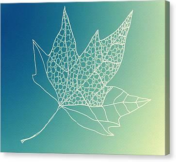 Aqua Leaf Study 2 Canvas Print by Cathy Jacobs