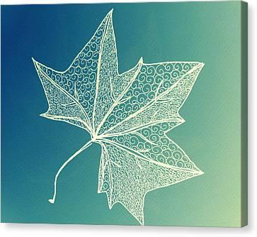 Aqua Leaf Study 3 Canvas Print by Cathy Jacobs