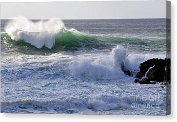 Canvas Print featuring the photograph Aqua Mist by Gina Savage