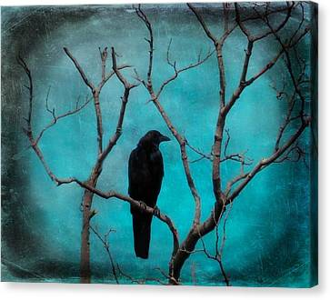 Tree Art Canvas Print - Aqua Twilight by Gothicrow Images