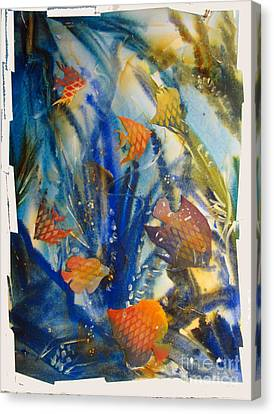 Aquarium 2 Archived Work Canvas Print by Charlie Spear