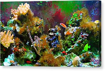 Aquarium Canvas Print