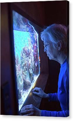 Aquarium Of Niagara Canvas Print
