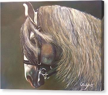 Arabian Beauty Canvas Print by Jean Yves Crispo