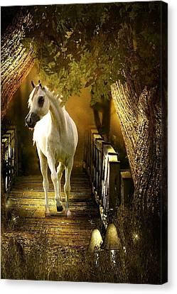 Arabian Dream Canvas Print