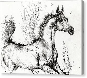 Arabian Horse Drawing 1 Canvas Print