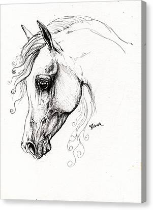 Arabian Horse Drawing 15 Canvas Print by Angel  Tarantella