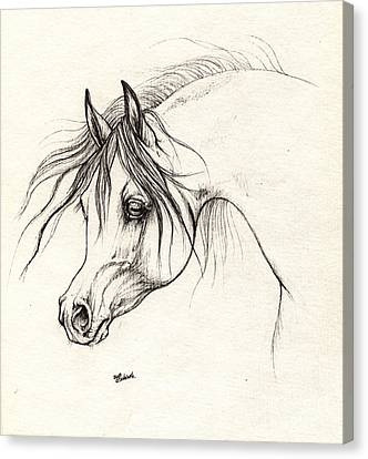 Arabian Horse Drawing 18 10 2013 Canvas Print by Angel  Tarantella