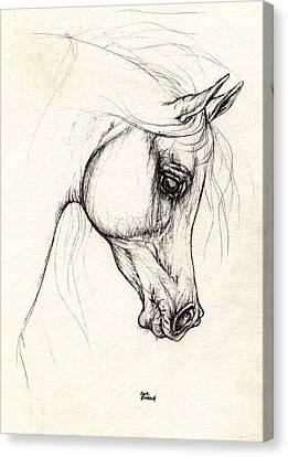Arabian Horse Drawing 20 10 2013 Canvas Print by Angel  Tarantella