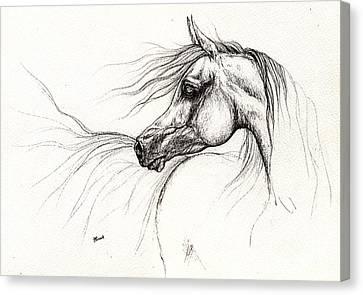Arabian Horse Drawing 2013 09 13 Canvas Print