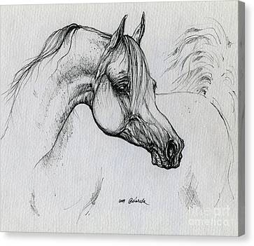 Arabian Horse Drawing 28 Canvas Print by Angel  Tarantella