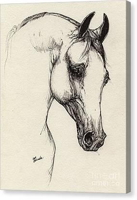 Arabian Horse Drawing 32 Canvas Print