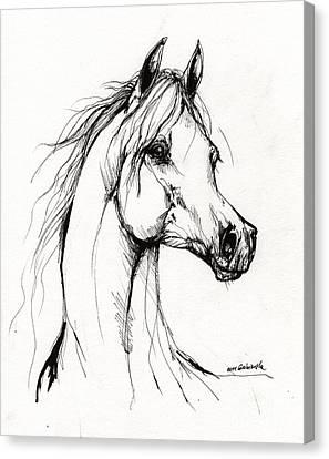 Arabian Horse Drawing 38 Canvas Print