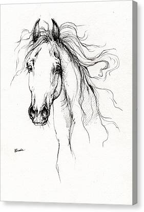 Arabian Horse Drawing 4 Canvas Print by Angel  Tarantella