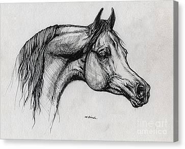 Arabian Horse Drawing 40 Canvas Print by Angel  Tarantella