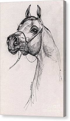 Arabian Horse Drawing 59 Canvas Print