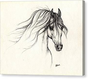 Arabian Horse Drawing B 18 10 2013 Canvas Print by Angel  Tarantella