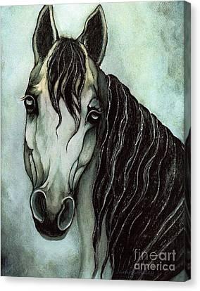 Monotone Canvas Print - Arabian Horse  by Janine Riley