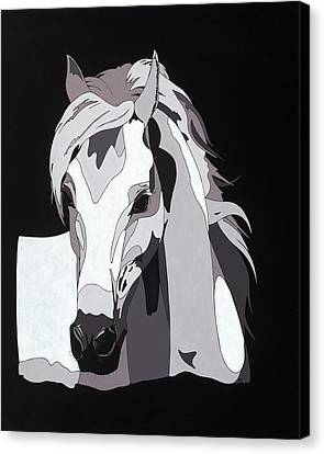 Arabian Horse With Hidden Picture Canvas Print by Konni Jensen