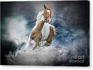 Stla Once Upon A Time Canvas Print
