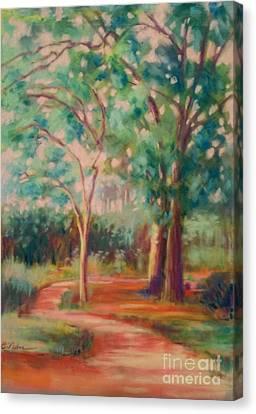 Jacksonville Arboretum Canvas Print - Arboretum by Cynthia Pierson