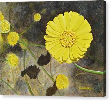 Arboretum Wild Flower  Canvas Print by Donna  Manaraze