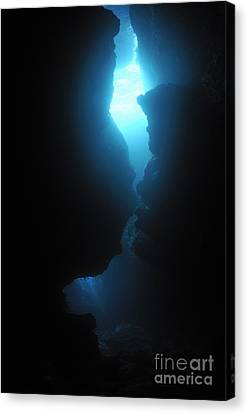 Arc-en-ciel Underwater Cave Canvas Print by Sami Sarkis
