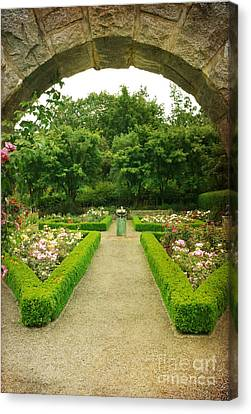 Canvas Print featuring the photograph Arch To The Rose Garden by Maria Janicki