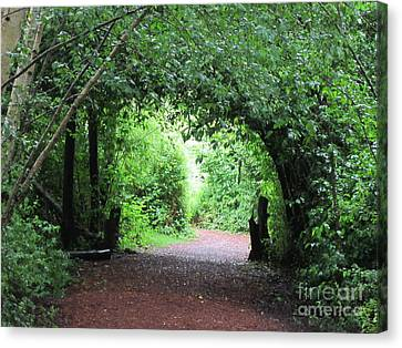 Arched Pathway Canvas Print by Melissa Stinson-Borg