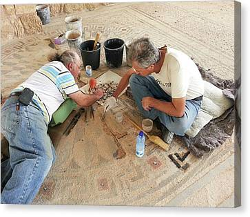 Archeologists Restore A Mosaic Floor Canvas Print by Photostock-israel