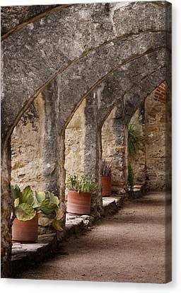 Arches Of San Jose Canvas Print by David and Carol Kelly