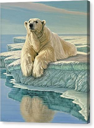 Arctic Heir Canvas Print