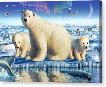 Arctic Splendor Canvas Print