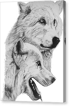 Arctic Wolves Drawing Canvas Print by Catherine Roberts