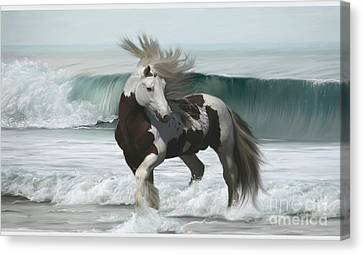 Ard Ri Canvas Print by Lynn Jackson
