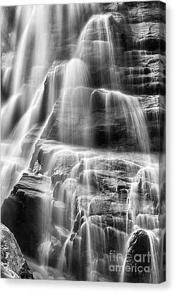 Arethusa Falls Canvas Print