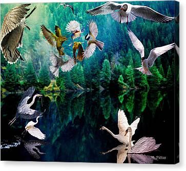 Ariel Squawkble Canvas Print