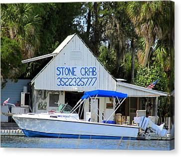 Aripeka Stone Crab Sales I Canvas Print by Buzz  Coe